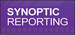 Synoptic Reporting