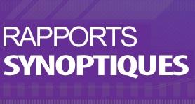 Synoptic reporting logo