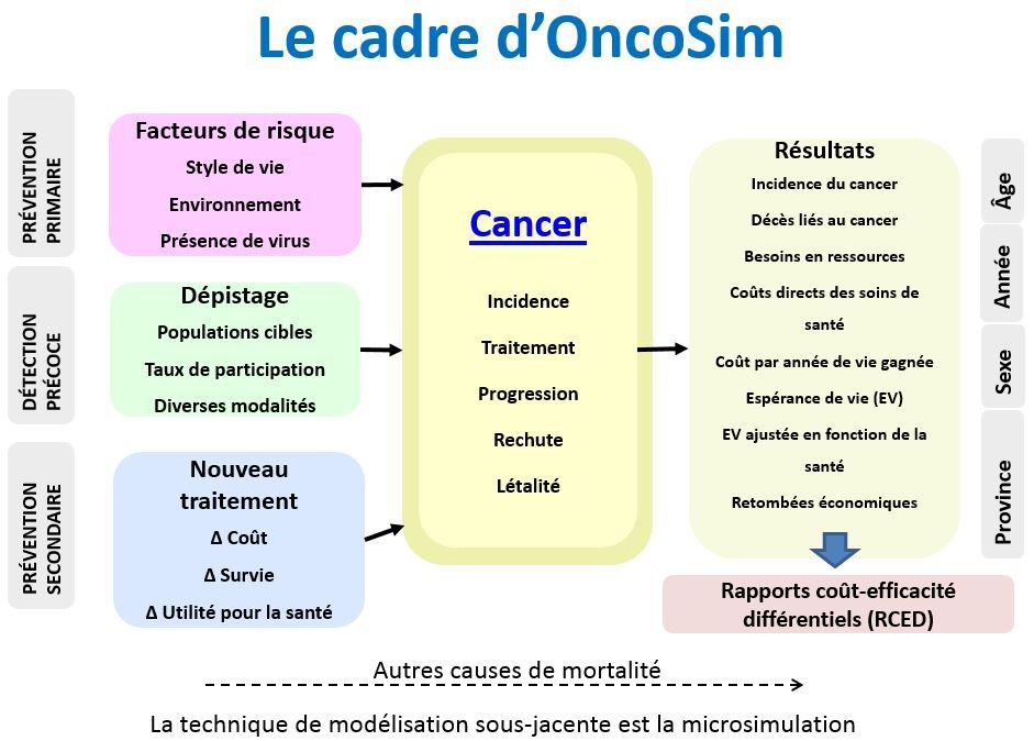 Illustration du cadre conceptuel du modèle OncoSim