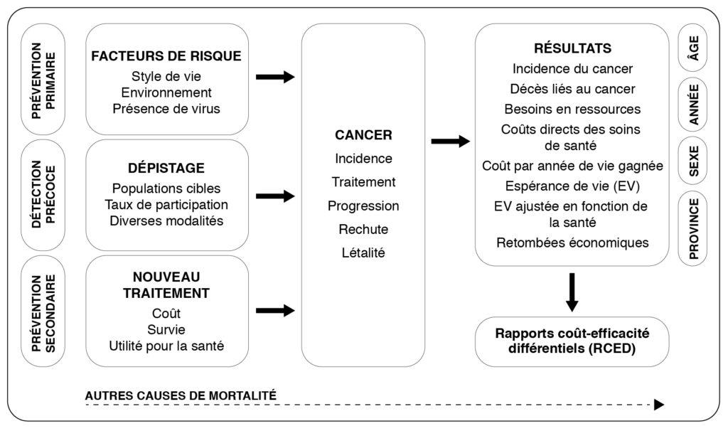 Le diagramme montre comment la prévention primaire (c. à d. les facteurs de risque tels que le style de vie, l'environnement et la présence de virus), la prévention précoce (c. à d. le dépistage de populations cibles, leurs taux de participation et les diverses modalités) et la prévention secondaire (c. à. d. le nouveau traitement, son coût, les taux de survie associés et son utilité pour la santé) contribuent à l'incidence, au traitement, à la progression, aux rechutes et à la létalité du cancer. Les résultats comprennent l'incidence du cancer, les décès liés au cancer, les besoins en ressources, les coûts directs des soins de santé, l'espérance de vie, les retombées économiques, et sont tous affectés par l'âge, l'année, le sexe et la province. Ces données mènent à des conclusions relatives aux rapports coût-efficacité différentiels (RCED).